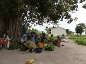 Stichting Hulp voor Afrika